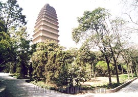 Buddhist Small Wild Goose Pagoda, Xian