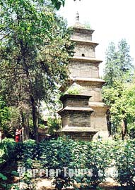 Xuanzang Pagoda, Temple of Flourishing Teaching, Xian