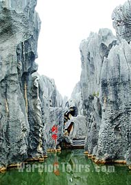 Kunming-Yunnan Stone Forest