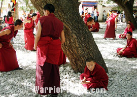 Monks debating in Sera Monastery, Lhasa