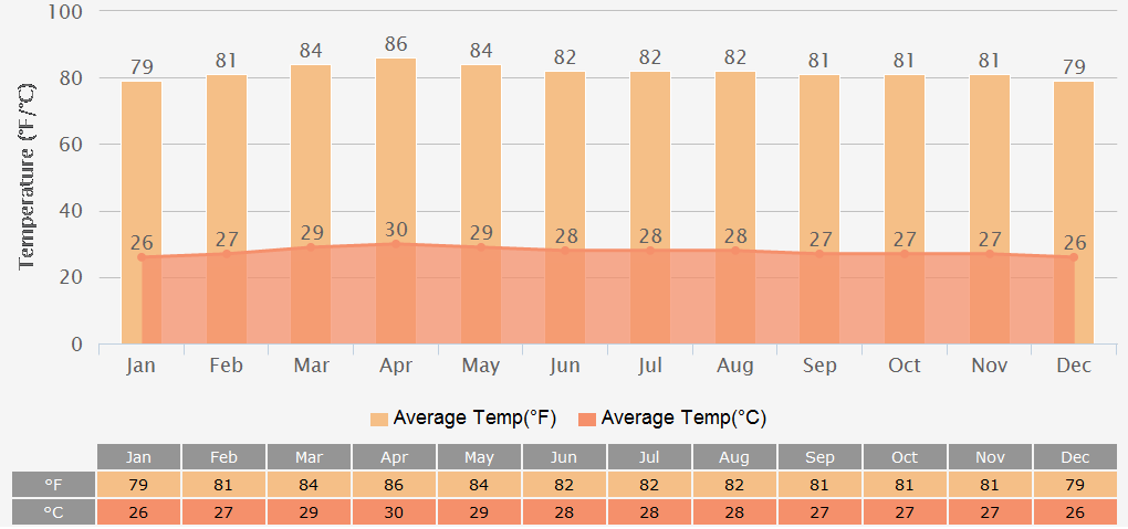 Average Temperatures Graph for Ho chi minh City